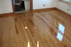 Refishing floor gloss01