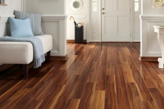 Laminate-floor-entryway